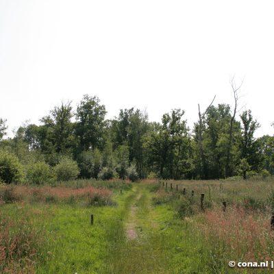 Landschap de Liereman